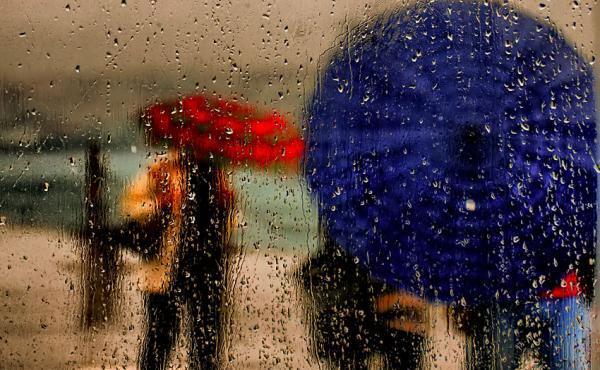 Kišni dan - Page 3 12000251