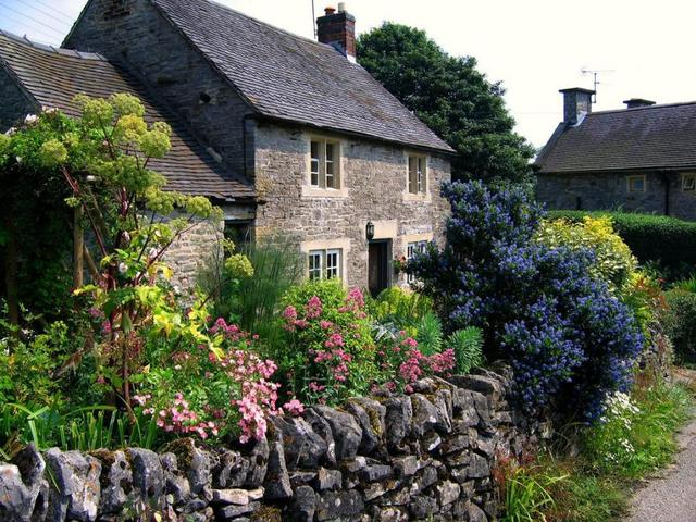 Cvijeće oko kuće  - Page 2 13070386