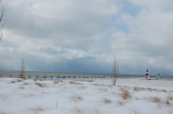 Snow Lake Effect Michigan - Gennaio 2010 4331246