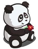1 Jade Falls Pandas & Love Story!